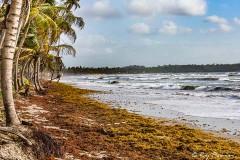 Manzanilla Bay on East Coast of Trinidad