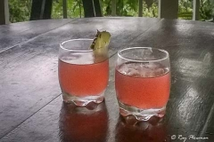 Rum Punch on the Veranda before dinner at Asa Wright Nature Centre in Trinidad